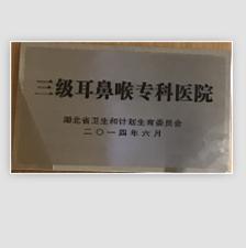 """热烈祝贺我院成为""""三级耳鼻喉专科医院"""""""