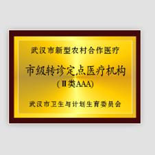 """热烈祝贺我院被评为""""市级转诊定点医疗机构"""""""