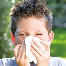 鼻窦炎手术多少钱