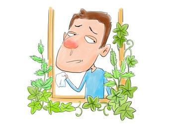 鼻炎为什么会反复的复发?